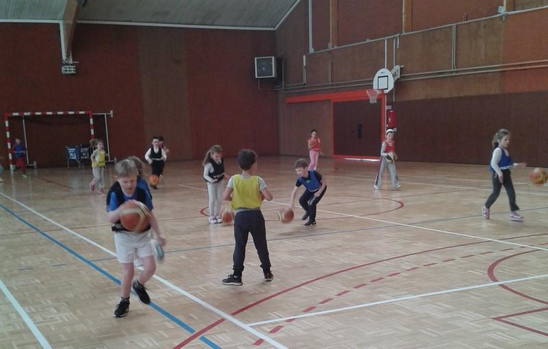 basket-cp-ce10002