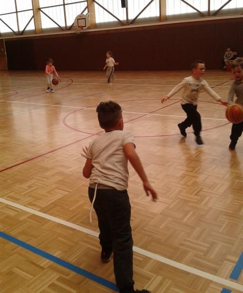 basket-cp-ce10005