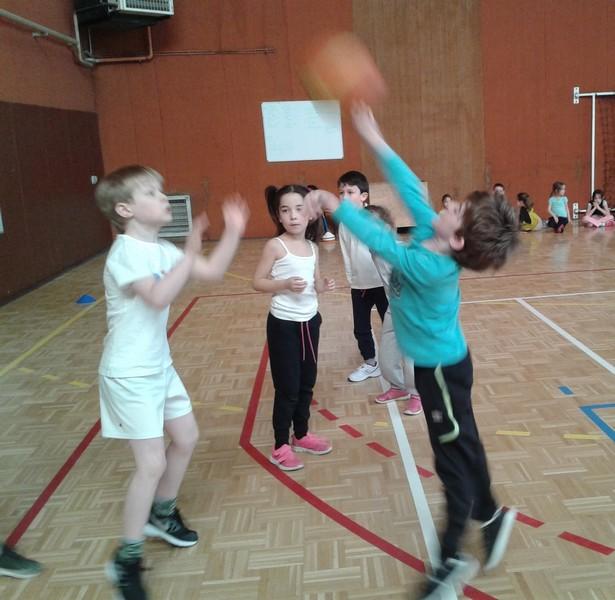 basket-cp-ce10009
