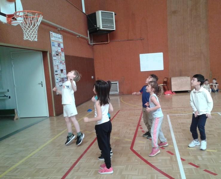 basket-cp-ce10010